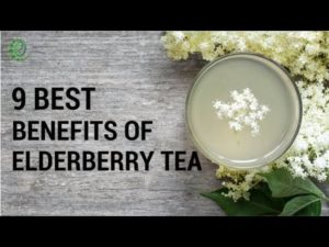 What are the health benefits of drinking elderberry tea? Is it good for you?